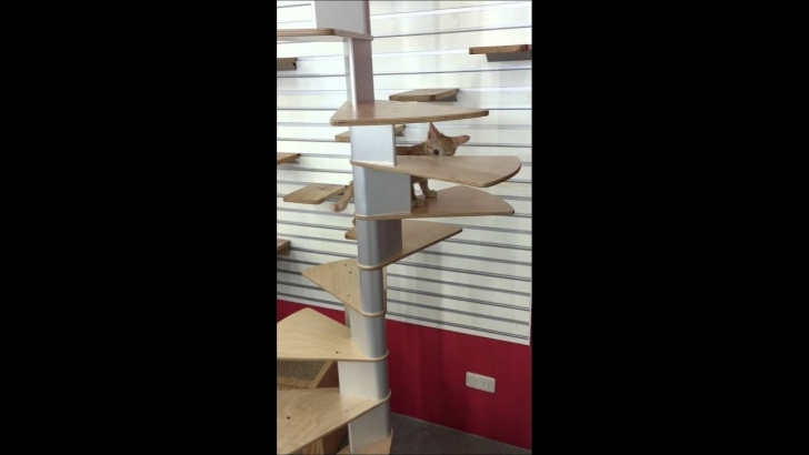Fantastic Cat Spiral Staircase Image 764