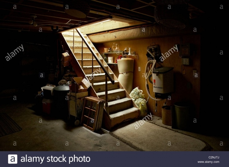 Inspirational Stairs Down To Basement Picture 656