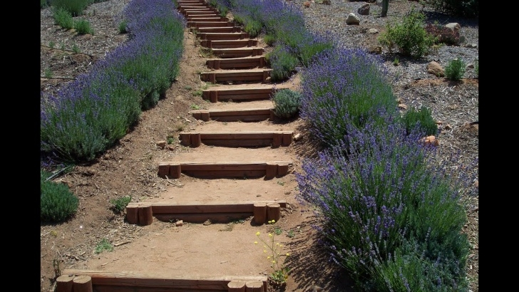 Top Hillside Stairs Design Picture 432