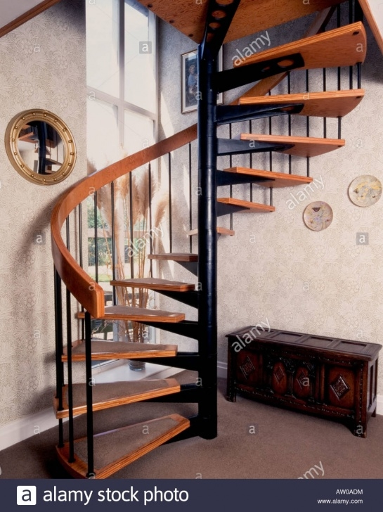 Amazingly Domestic Spiral Staircase Image 287