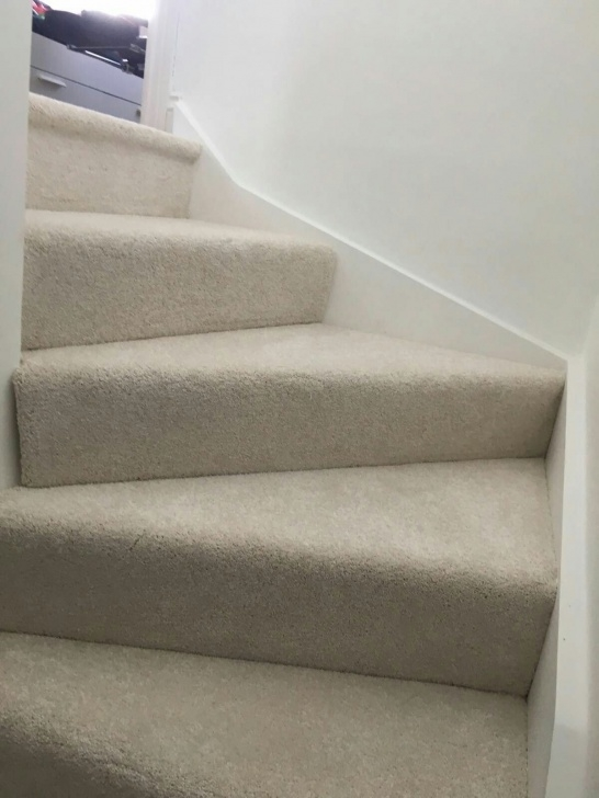 Best Carpet Suitable For Stairs Image 430