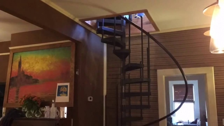 Best Spiral Staircase To Basement Photo 431