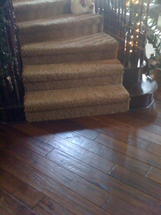 Cool Carpeted Stairs With Wood Floors Picture 206