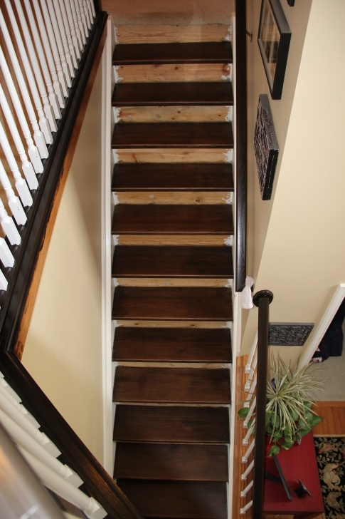 Creative Staining Stair Treads Photo 514