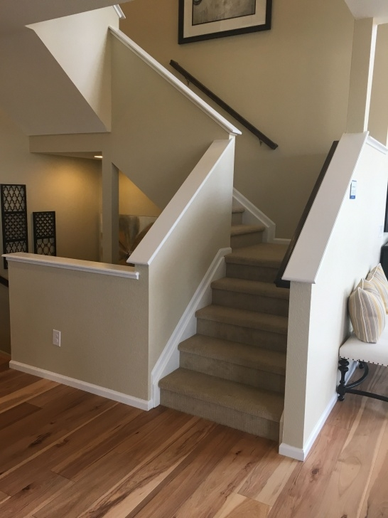 Fascinating Wall Stair Railing Picture 873