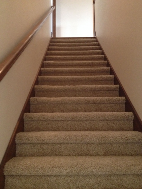 Great Bullnose Stairs Carpet Photo 000
