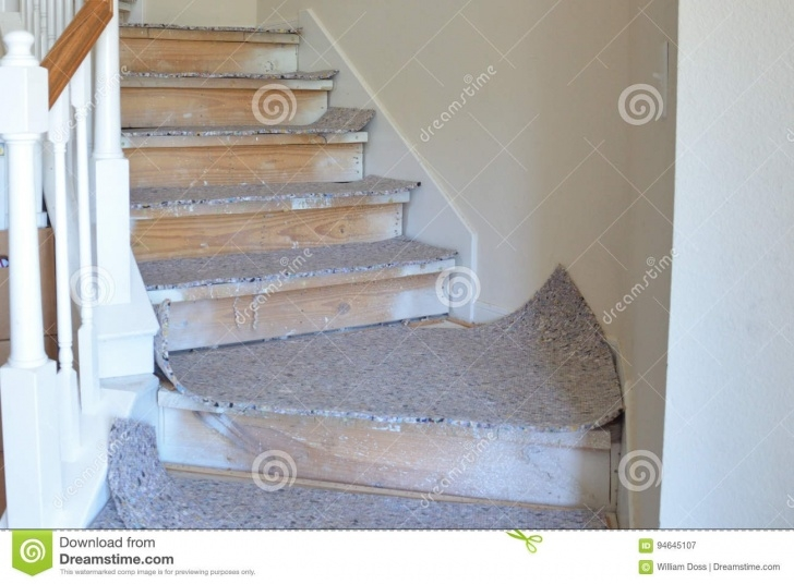 Great Ideas Carpet Pad For Stairs Photo 207