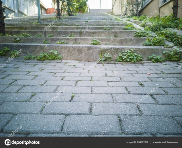 Great Outdoor Stone Steps Photo 509