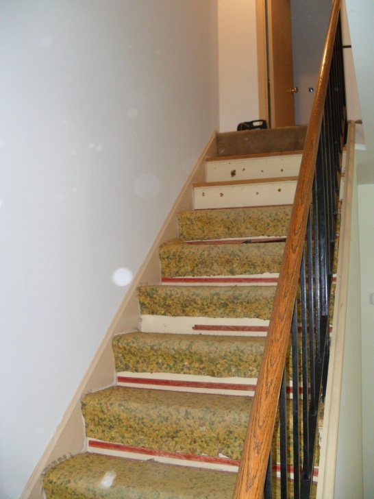 Inspirational Carpet Pad For Stairs Photo 936