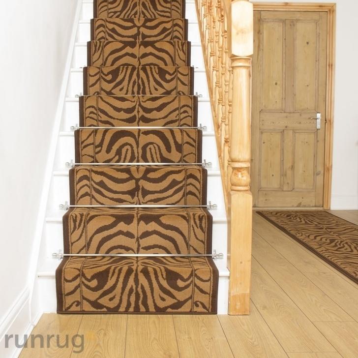 Inspirational Zebra Stair Carpet Image 043