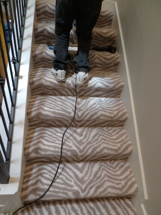 Most Creative Zebra Stair Carpet Picture 804