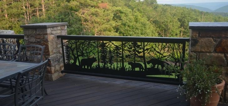 Stunning Decorative Metal Handrails Photo 050