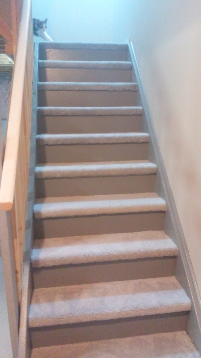 Stylish Carpet For Basement Stairs Image 620