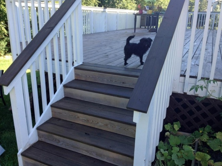 Stylish Handrails For Concrete Steps Lowes Picture 780