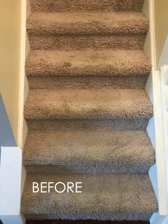 Super Cool Carpet On Stairs Only Photo 808